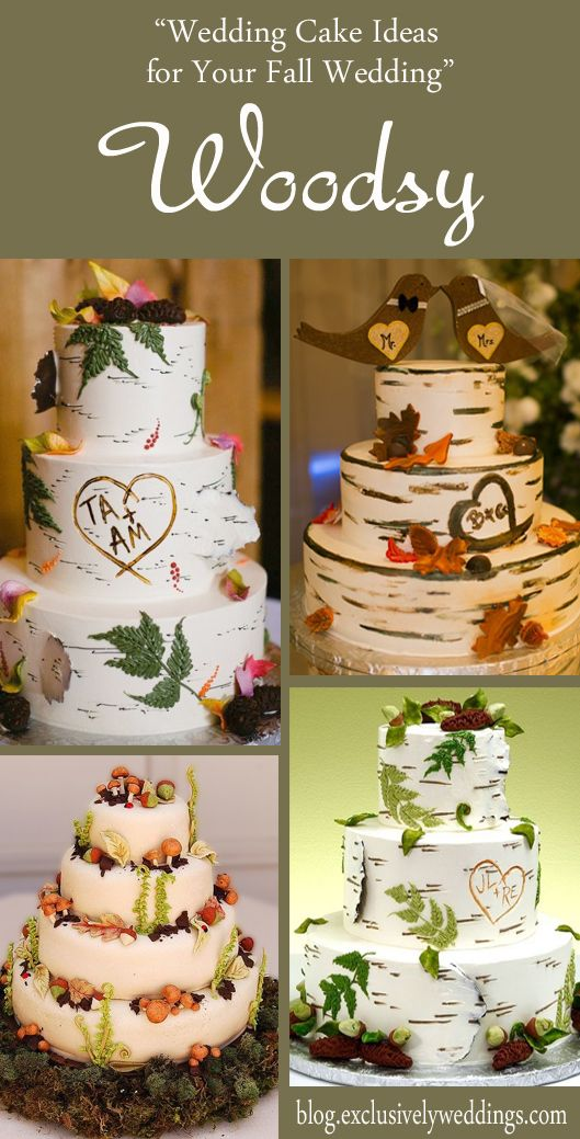 165 best fall wedding ideas images on pinterest fall wedding 165 best fall wedding ideas images on pinterest fall wedding weddings and cake wedding junglespirit Gallery