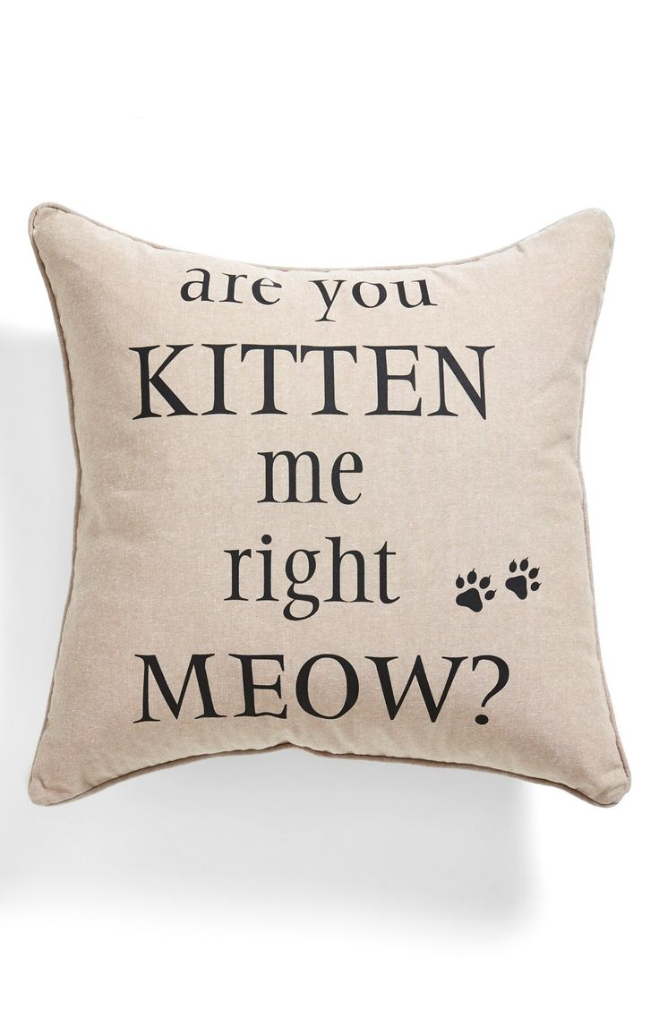 'Are You Kitten Me Right Meow?' - Nope!