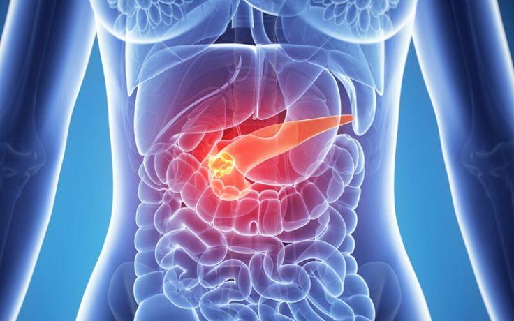 Diabetes tipe 2 dan Mekanisme dalam tubuh