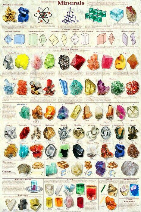 Minerals! Todo un mundo!