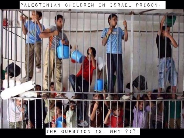 Please tell me these are Hamas Militants, but ofcourse the Israeli Propoganda machine and Hasbara trolls have convinced a large part of the western population that Israel is the victim #Sickening Innocent Palestinian children jailed by IDF