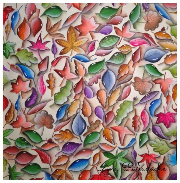 Coloring Books Adult Colouring Johanna Basford Colored Pencils Secret Gardens Art Illustrations Layering People In Love