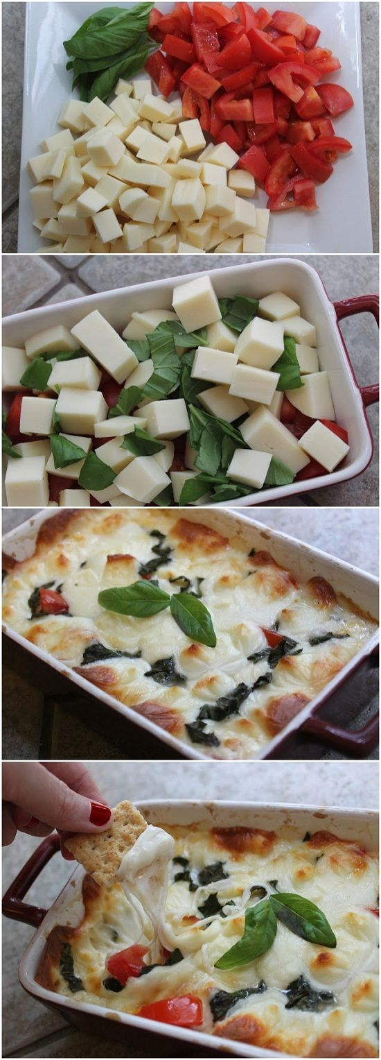~Hot Caprese Dip~ Ingredients: 10 ounces fresh mozzarella 3 small roma tomatoes, seeded and juiced 3 tablespoons fresh basil Instructions: Chop up all of your ingredients In a small baking dish, combine all the ingredients and mix well. Bake at 375 degrees for 15-20 minutes, then broil for 2 minutes so cheese becomes bubbly and golden. Serve immediately with crackers.