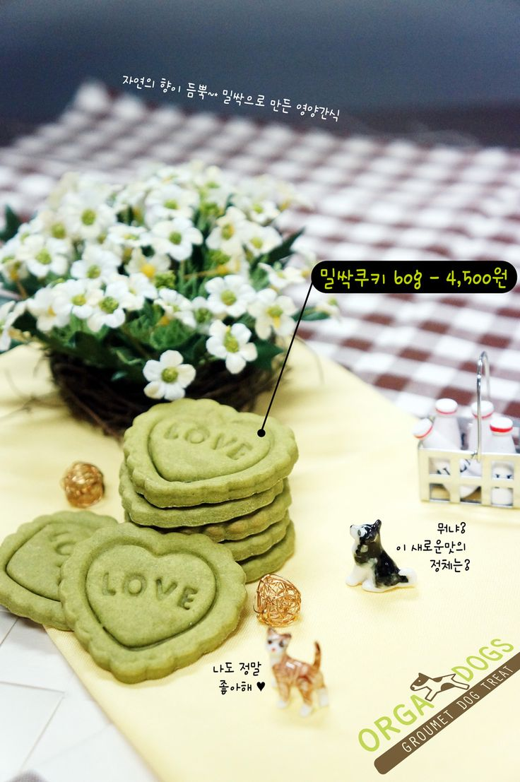 [Wheat Grass Cookie]  Dog & Cat