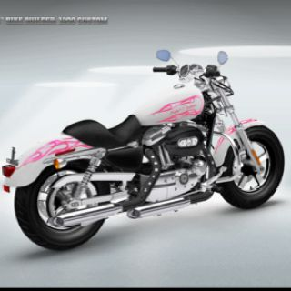 Girls on Bikes!Harley Davidson, Pink Harley, Wanna Buildings, Pink Motorcycles, Bikes, Buildings Pinkismyfavorit, Sweets Riding, Buildings Pink Is My Favorite, Harley 3