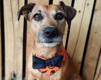 Bandana di cane di Halloween, Halloween cane Costume, stampa zucca, collare di cane di Halloween, Halloween cane Papillon, Halloween Pet, cane arancione Bandana
