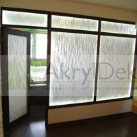Transparent wall, filling of interior wall made of resin panel with natural inlay of plants