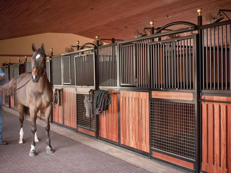 5 things to consider before you decide to live above a #horse #barn! #horsetips