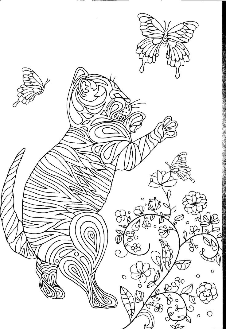 123 Best Images About Coloring Pages: 17 Best Images About Cats On Pinterest