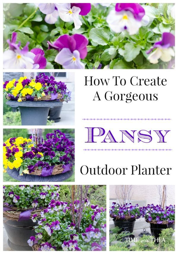How To Create A Gorgeous Pansy Outdoor Planter ~ Create an outdoor planter by embellishing trailing pansies with a ribbon decorated grapevine wreath!