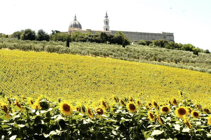 Loreto wonderful view