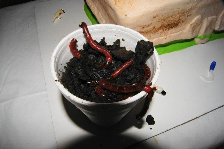 Jello straw worms and oreo dirt. Awesome worm bucket