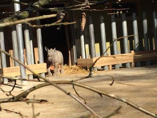 Zoo und Botanischer Garten Augsburg