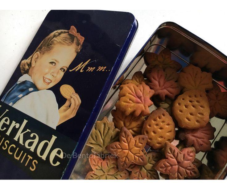 Suikervrije herfst koekjes