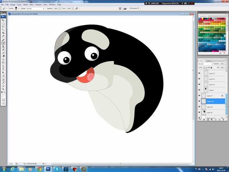 Illustrating drawing painting - how to draw cartoon killer whale