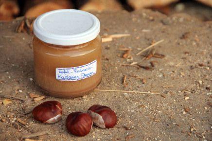 D.I.Y. Apfel-Rosmarin-Kastanien-Shampoo Mit selbst gesammelten Zutaten! Lecker duftende Shampoos gibt es nur in Plastikflaschen und mit küns...