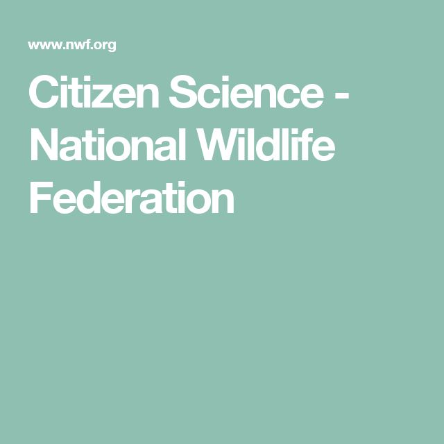 Citizen Science - National Wildlife Federation