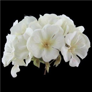 find this pin and more on wedding flowers white geranium spray from hobby lobby