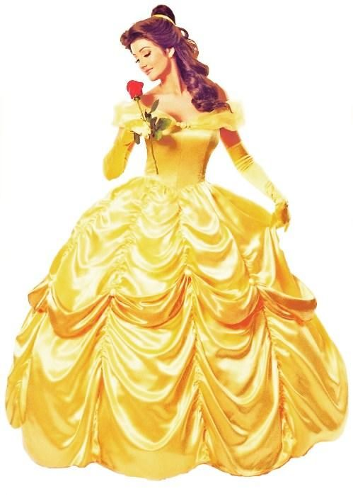 Belle S Diary Bohemian Style: Details About Deluxe Disney Belle Costume Beauty The Beast