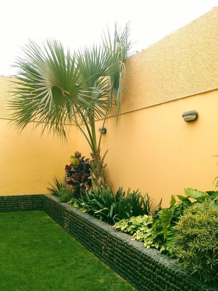 Jardin en jardineras 2 jardines terrazas y patios - Jardineras para interiores ...