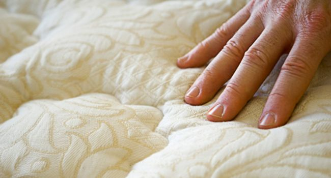 Products Promising Better Sleep Blanket The Market Rid Of Bed Bugs Bed Bugs Bed Bug Control