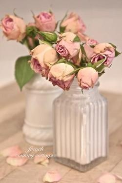 Pale pink roses in milk glass