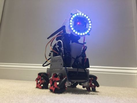 Do-it-yourself Autonomous Tiny Robot