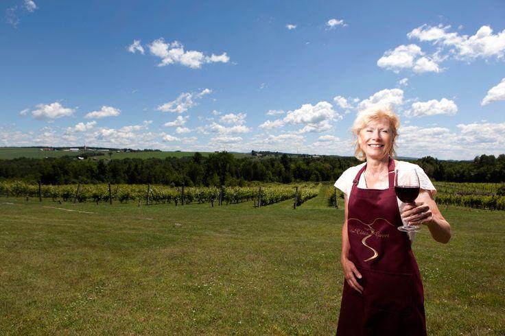 Le Vignoble Les Côtes du Gavet est situé à Tingwick au Centre-du-Québec. Produits disponibles: Vin blanc Carole, vin rouge Monsieur Dulude, vin rosé Coup de Coeur,  vin type porto et plus encore. #vignoblescentreduquebec