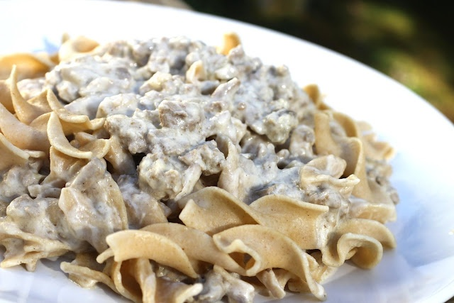 Creamy Ground Turkey Stroganoff | April's World: Catch the Spirit ...