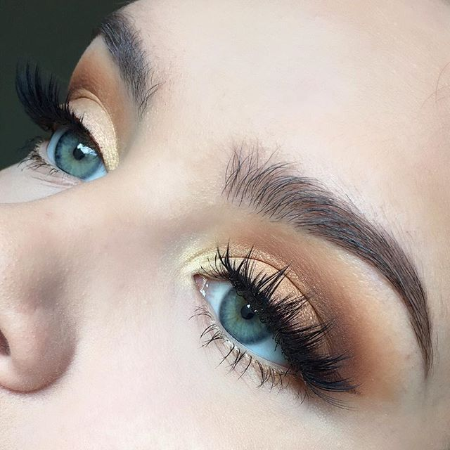 This is much more of a honey-toned eye than gold I would say. I love this look…