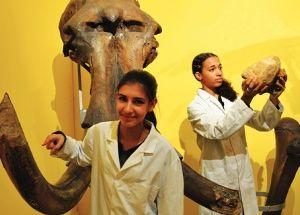 Natuurhistorisch museum In het natuurhistorisch museum vind je allerlei skeletten van dieren en fossielen. Het is een hele grote collectie. Er zijn ook gevarieerde exposities! Het is makkelijk te bereiken want het is gewoon in Rotterdam. En het kost maar €5,-