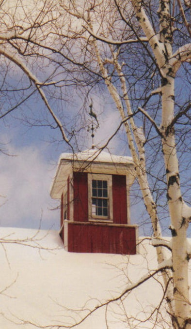 41 best cupolas images on pinterest weather vanes barn for Country cupola