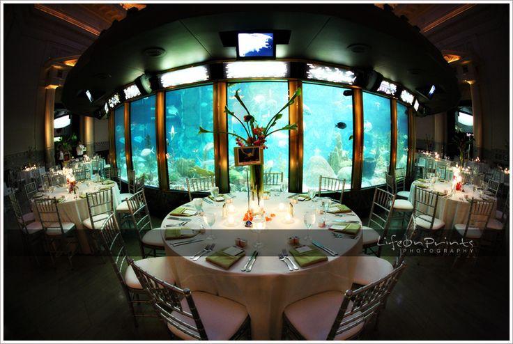 aquarium wedding reception