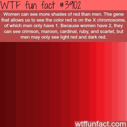 WTF fact?