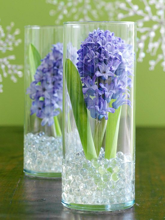 Floral Arrangement--Hyacinths, usually available at floral shops in December, offer a break from traditional poinsettias. Display a single hyacinth in a glass cylinder that's slightly taller than the bloom. Stabilize the stem in glass marbles. Add water.
