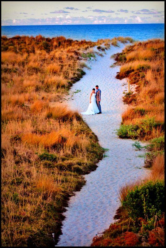nz beach wedding