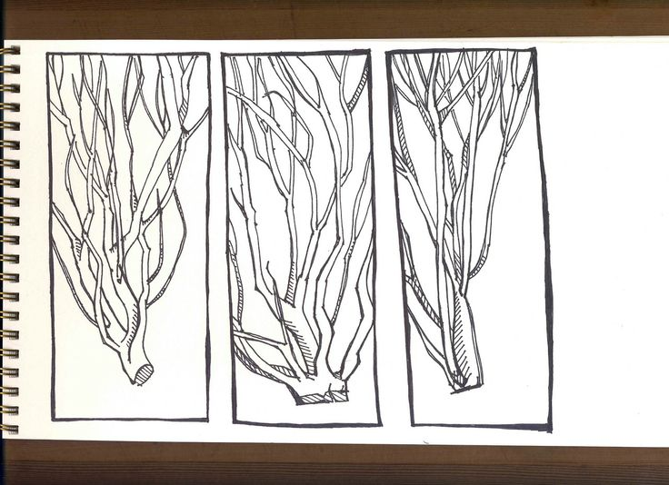 Brush Sketches : Sharpie Illustrations from Lake Washington.   by Amy Huber