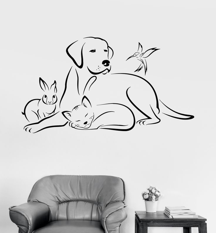 Vinyl Wall Decal Pets Animals Dog Bird Cat Veterinary Medicine Stickers (ig3380)