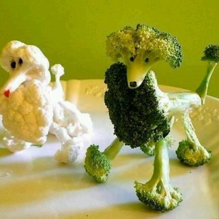 broccoli and cauliflower poodles