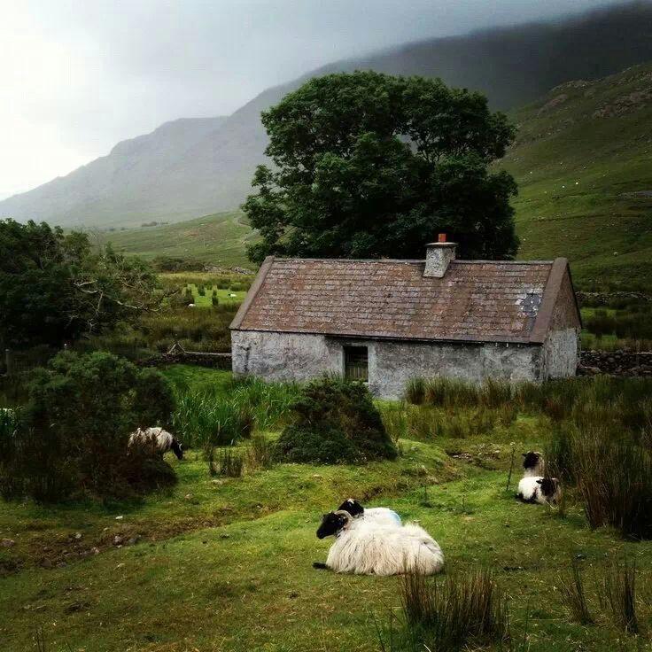 Tranquil Ireland