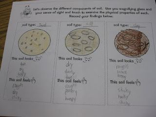 10 best images about 3rd grade sci soil on pinterest for Soil 2nd grade