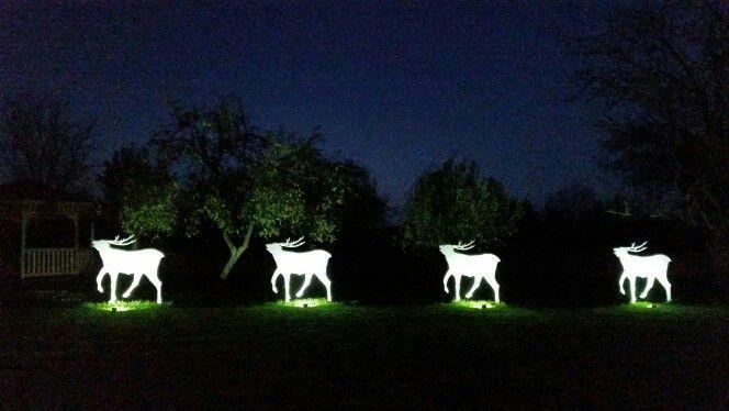"""Deer's wedding"" by Ivan Generalić at night"