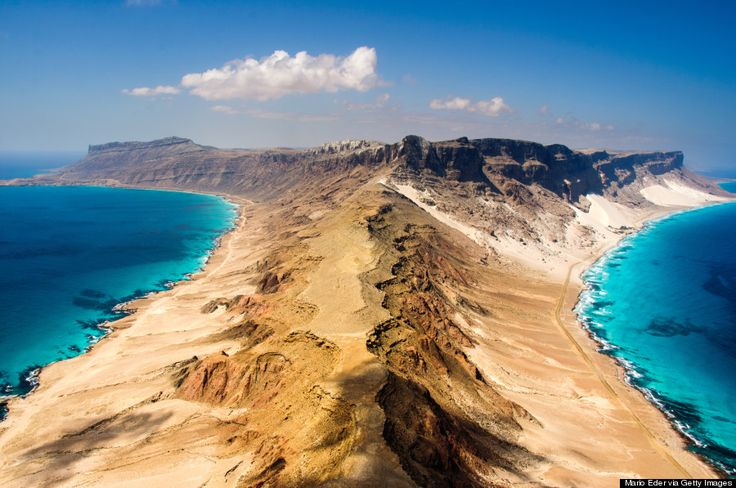 Socotra Island, Yemen. 1/3 of its plant life is native only to this island & cannot be found anywhere else in the world