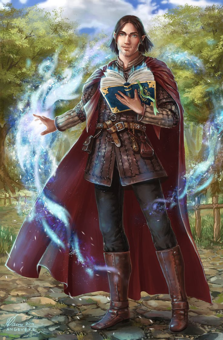 Image result for half elf wild mage
