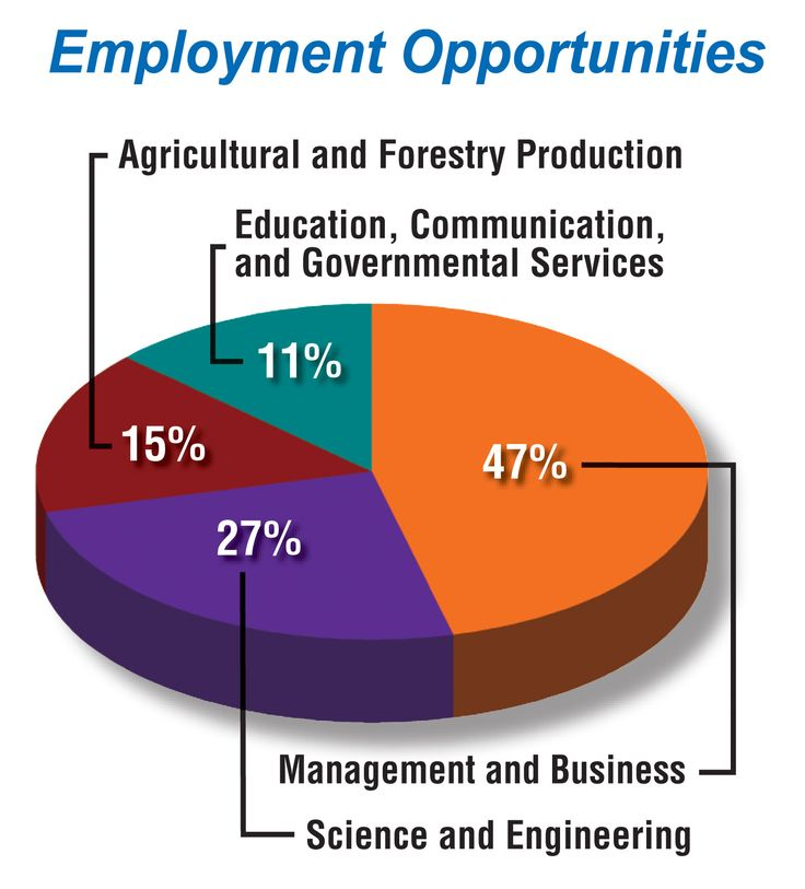 This pie graph represents employment opportunities for