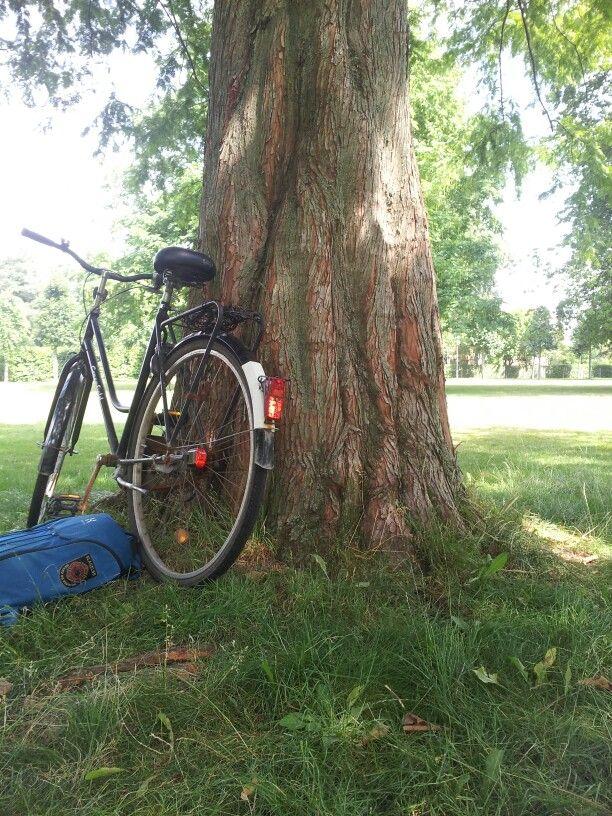 Bike in nature #bike #tree #green #grass #park #fashion #nature #colorful #art #creation