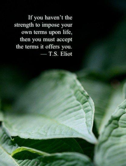 Si no tienes la fortaleza para imponer tus términos a la vida, entonces debes aceptar los términos que ésta te ofrece. T.S. Eliot