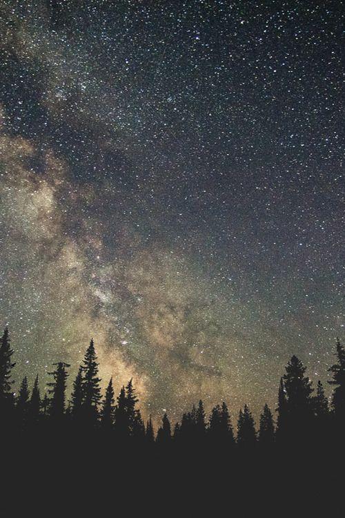 Night sky #adelinestargazes #adelineinspiration