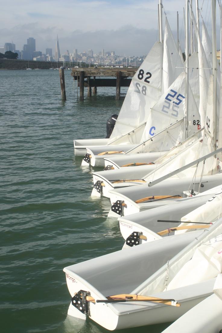 Regatta at Treasure Island San Francisco CA