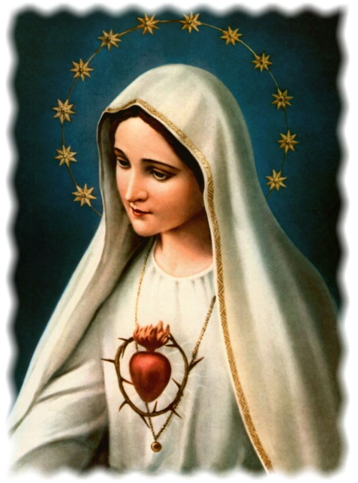 Immaculate Heart of Our Lady of Fatima. More on this here … http://corjesusacratissimum.org/2014/08/on-devotion-to-the-immaculate-heart-of-mary/